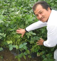 しんどおり茶豆生産組合 玉木豊さん