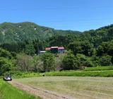 田植え真っ最中です!美味しいお米を育てます!!