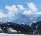 スイスの和食紹介プロジェクトサイトのパートナーになりました。
