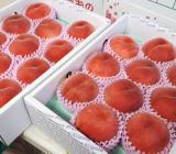 桃の品種が代わりました。