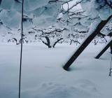 積雪70センチ
