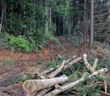 木そのままの香りを楽しむ八角アロマブロックの使い方