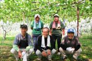 うさぎ村の葡萄畑