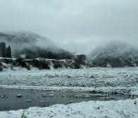 初雪!この雪が東山ファームのお米を特別おいしくしてくれます。