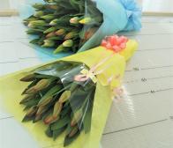 チューリップは2月の誕生花