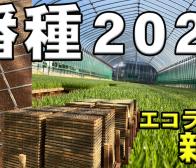 【田植え】新人 農業実習 コシヒカリ 山田錦