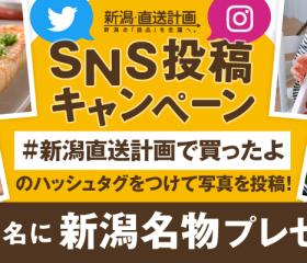 「#新潟直送計画で買ったよ」8月のプレゼント