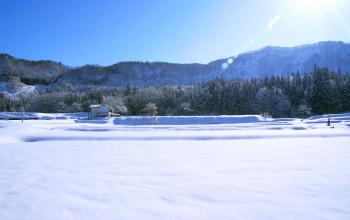 豪雪の地 津南の豊かな自然環境
