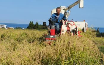農薬の使用を極力抑えた栽培