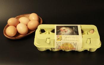 生産者が少なく希少な卵です。