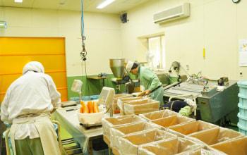 新飯田工場内を拝見、みそ漬の生産中です