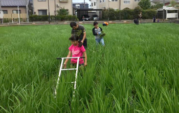 地域の子ども達との農業体験を通じて米作りの楽しさを伝えている
