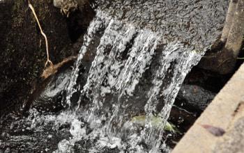 石沢農園の引いている水は、豊かな雪溶け水を含む山から湧き出したとても綺麗な天然水!