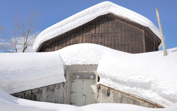 雪室熟成商品の開発に積極的に取組む