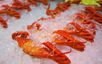 日本海鮮魚センター