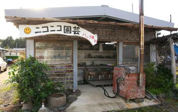小野健造庭