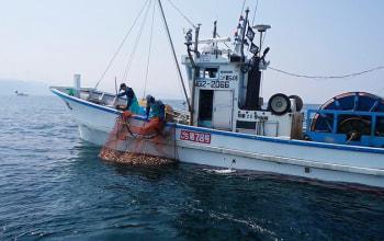 上越漁業協同組合
