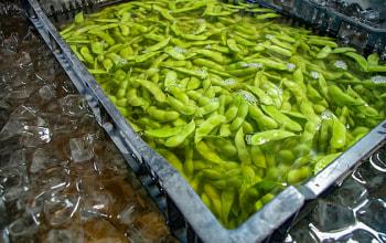 ナカムラ農産
