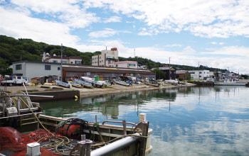 寺泊漁業協同組合