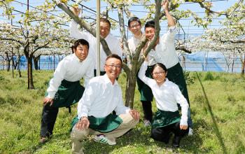 <!--ル・レクチェの収穫風景--!>地域を盛り上げる三条果樹専門家集団