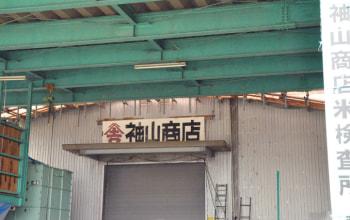 袖山商店の米検査所・米穀保管倉庫