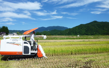恵まれた土地環境で美味しい惣五郎米が育まれます