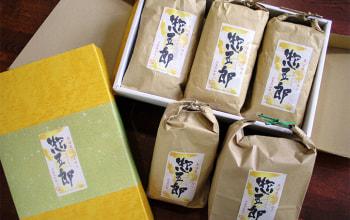 冷めても美味しさ変わらぬ惣五郎米、ギフトパックもあります