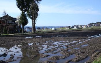自然豊かな新潟県十日町市