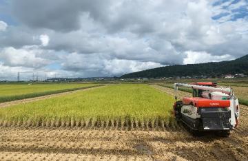 三十六 長谷川農園