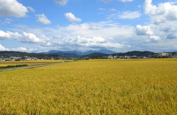 新潟サトウ農園