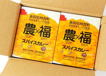 梱包イメージ(農×福スパイスカレー 6パック入り)