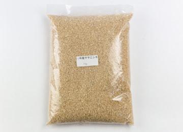 商品イメージ(玄米)