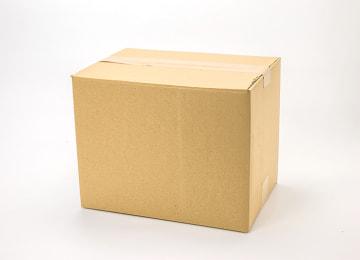 梱包イメージ(20本入り)