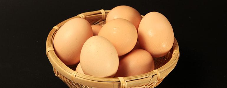 乳製品・卵