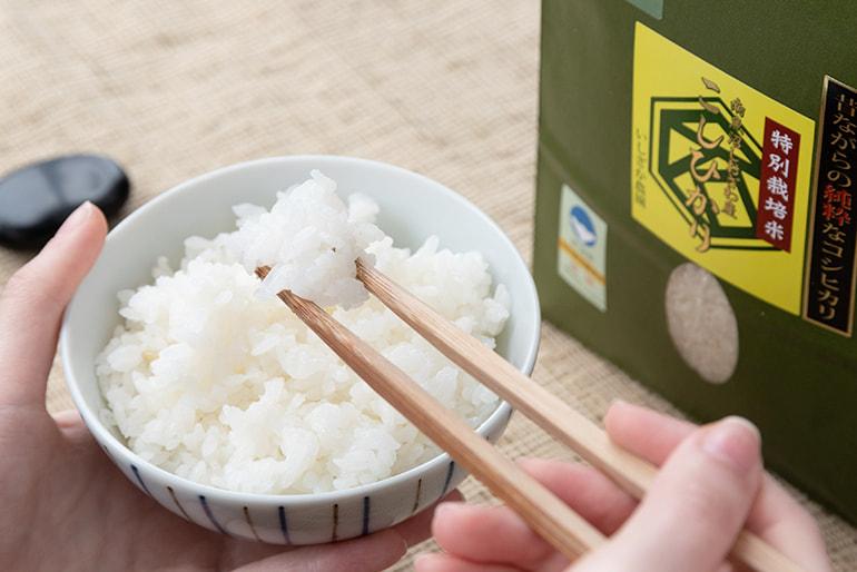 30年度米 南魚沼 塩沢産コシヒカリ(特別栽培米・従来品種) – いしざか農園