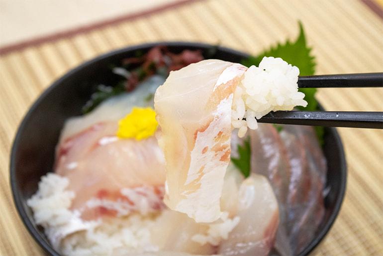 寺泊産 真鯛の鮮魚セット – 寺泊漁業協同組合
