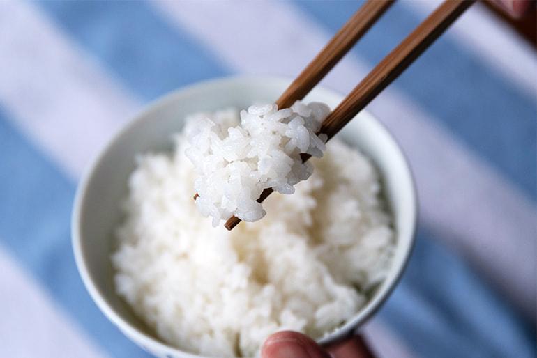 令和3年度米 新潟産 コシヒカリ(従来品種) – 小林農場