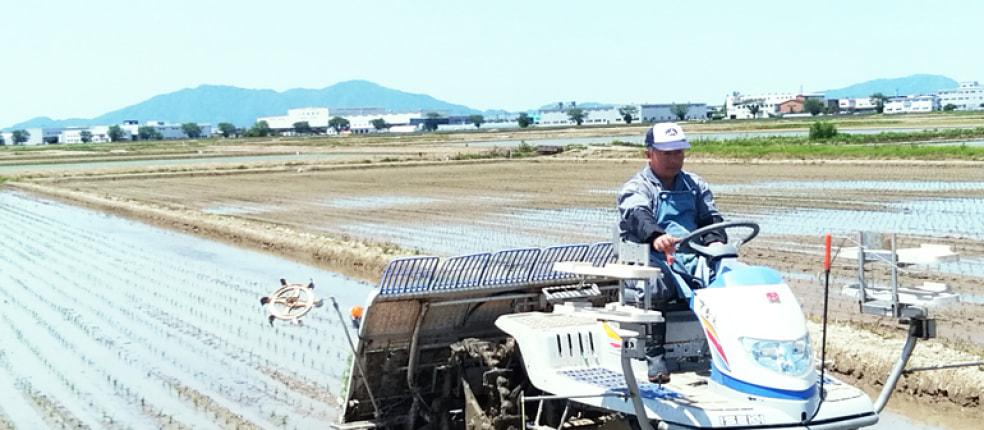 佐藤農産有機センター