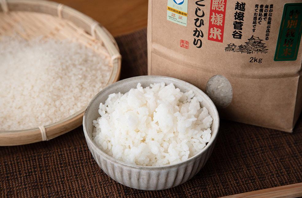 令和2年度米 越後菅谷殿様米コシヒカリ(特別栽培・従来品種)