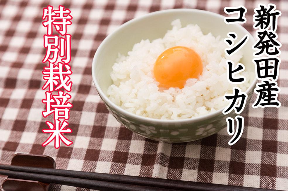28年度米 新発田産コシヒカリ(特別栽培米)