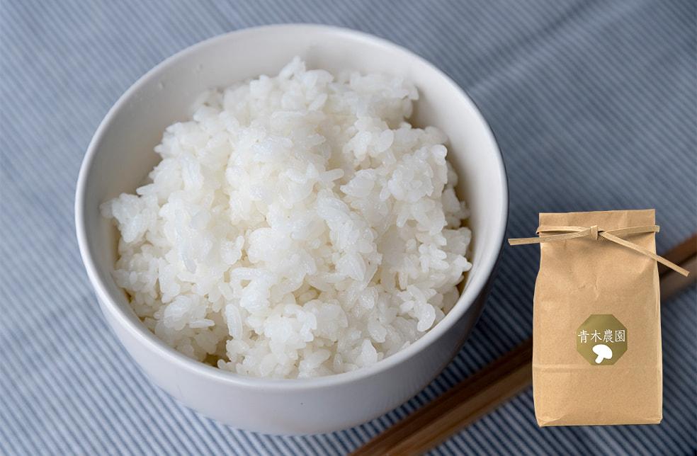 令和3年度米 新潟県産 コシヒカリ(従来品種)