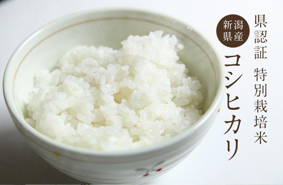 令和元年度米 糸魚川 早川産 コシヒカリ(特別栽培米)