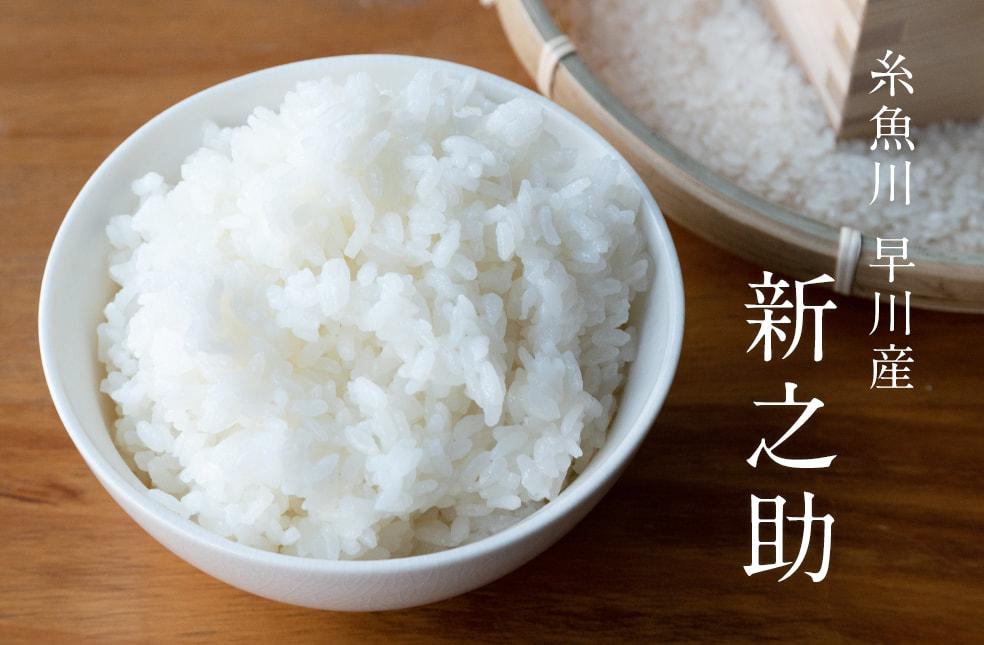 令和元年度米 糸魚川 早川産 新之助