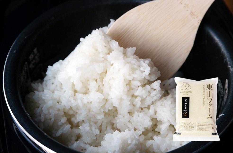 予約注文:令和3年度米 早川産コシヒカリ「直治の米」(特別栽培・従来品種)