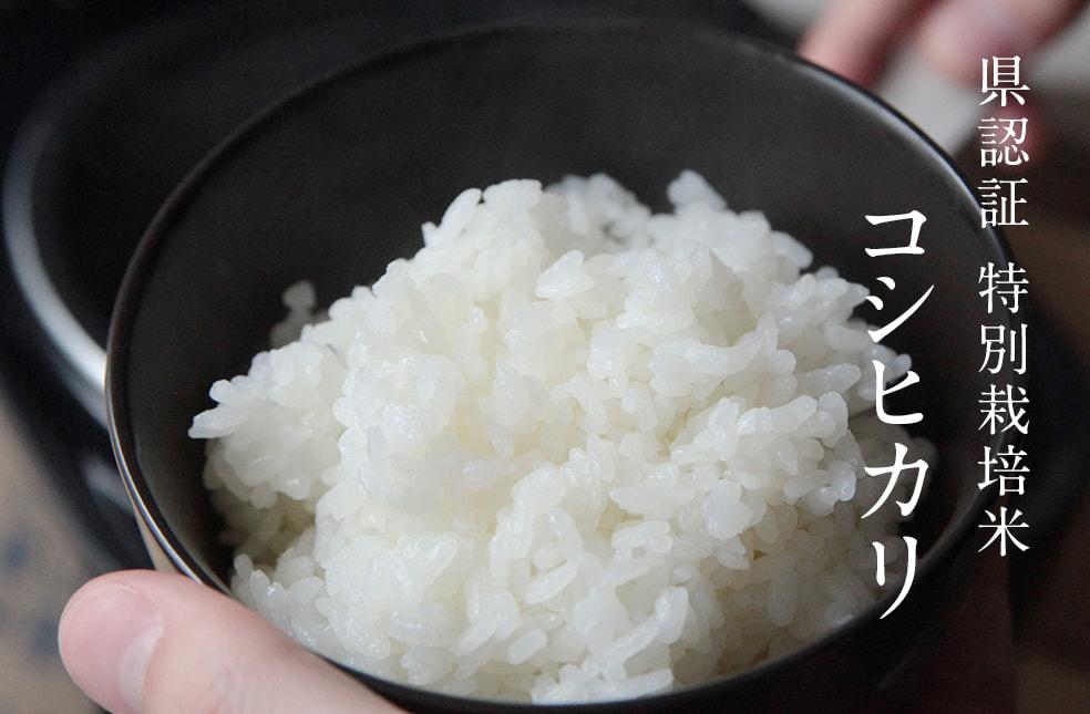 令和元年度米 新潟産コシヒカリ(特別栽培米)