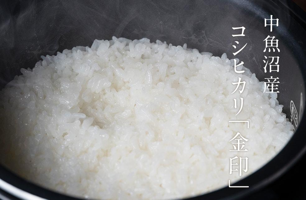 令和2年度米 中魚沼産コシヒカリ 金印
