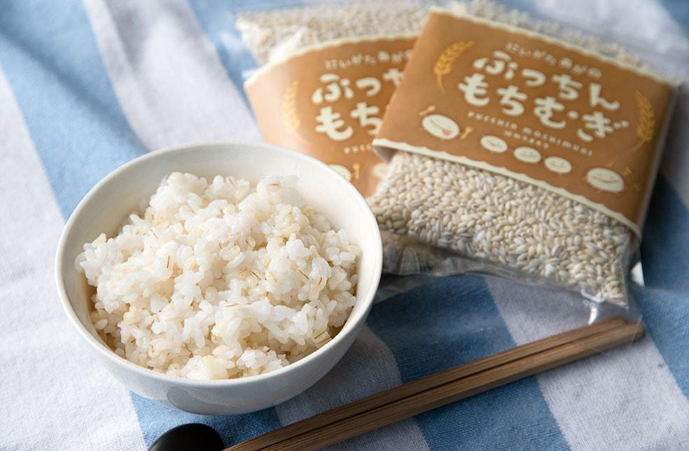 新潟産 もち麦「ぷっちんもちむぎ」(はねうまもち)