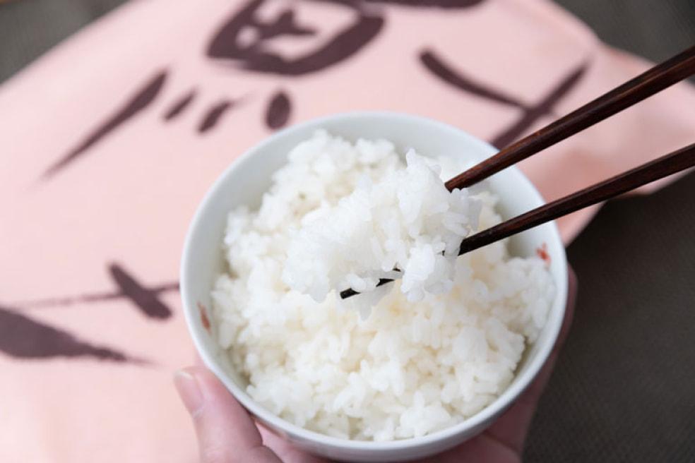 令和2年度米 新潟産 コシヒカリ「鮭」