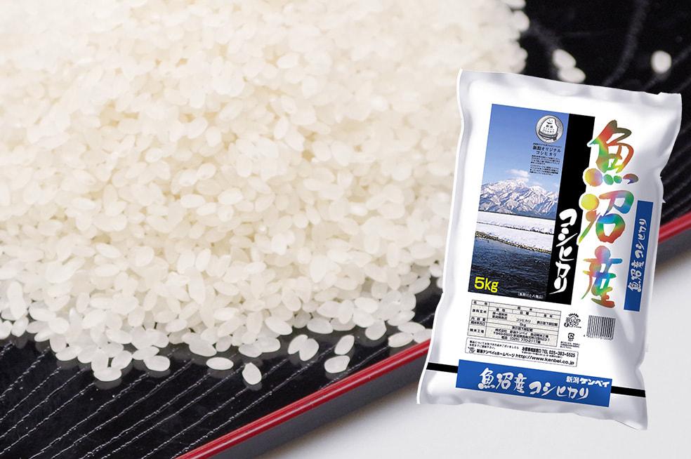 令和元年度米 魚沼産コシヒカリ