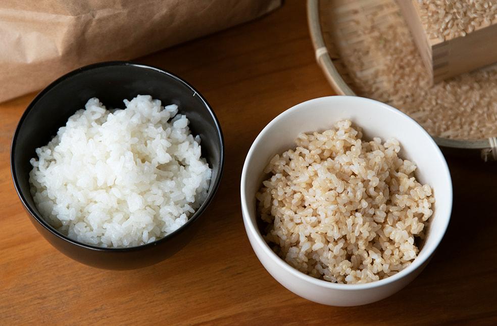 令和3年度米 自然栽培米コシヒカリ(従来品種)